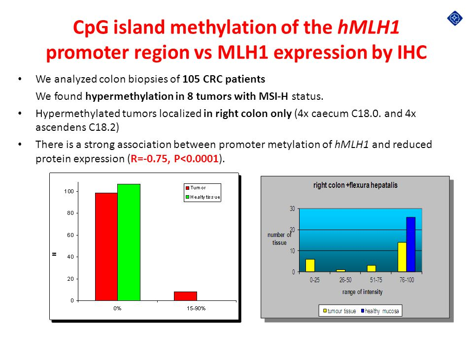 CpG island methylation of the hMLH1 promoter region vs MLH1 expression by IHC