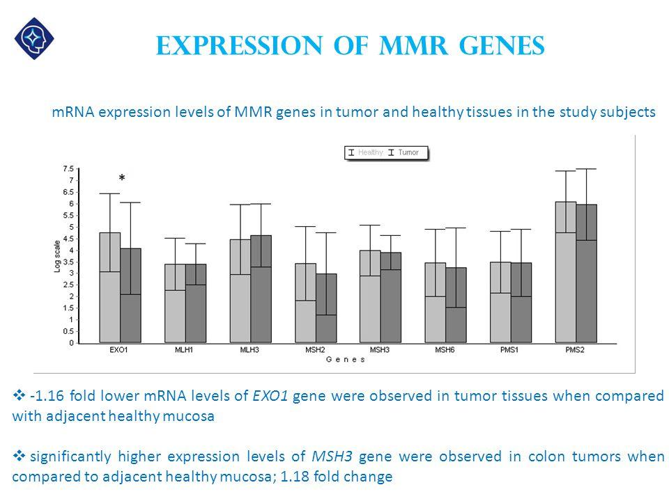 Expression of MMR genes