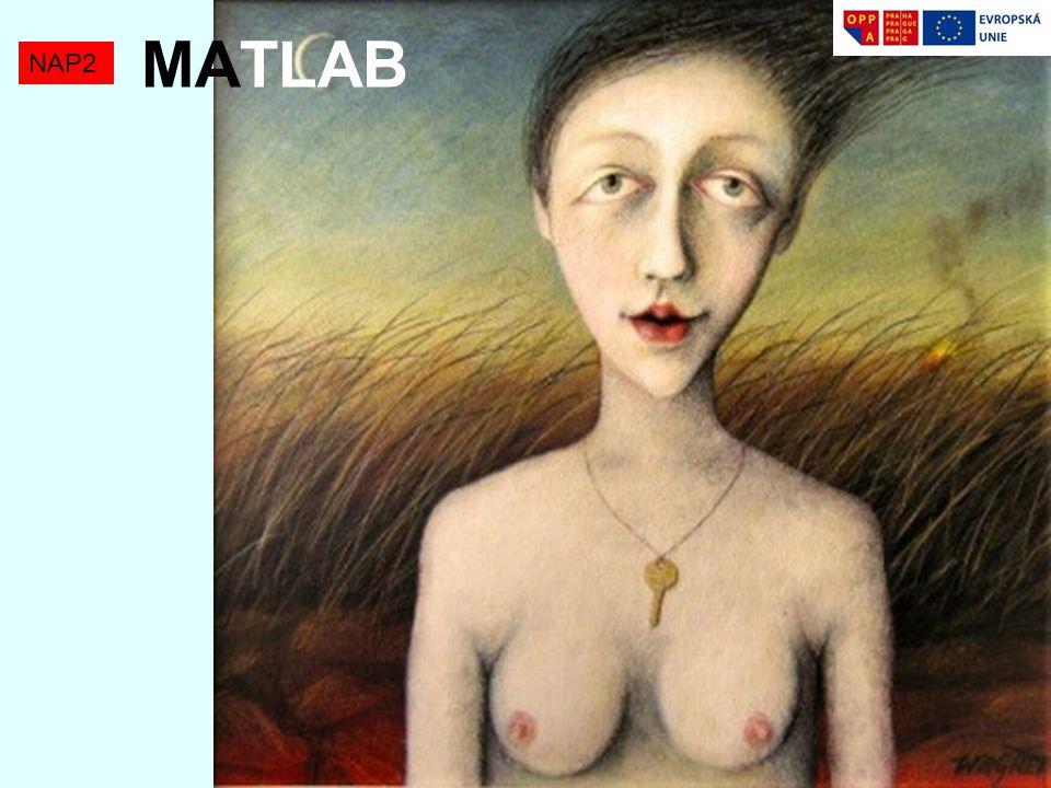 MATLAB NAP2
