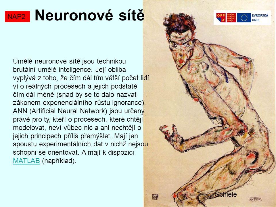 Neuronové sítě NAP2.