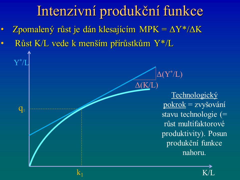 Intenzivní produkční funkce