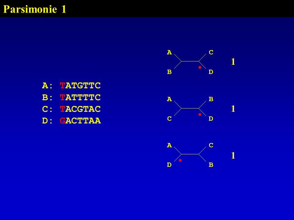 Parsimonie 1 1 A: TATGTTC B: TATTTTC C: TACGTAC D: GACTTAA A C B D A B