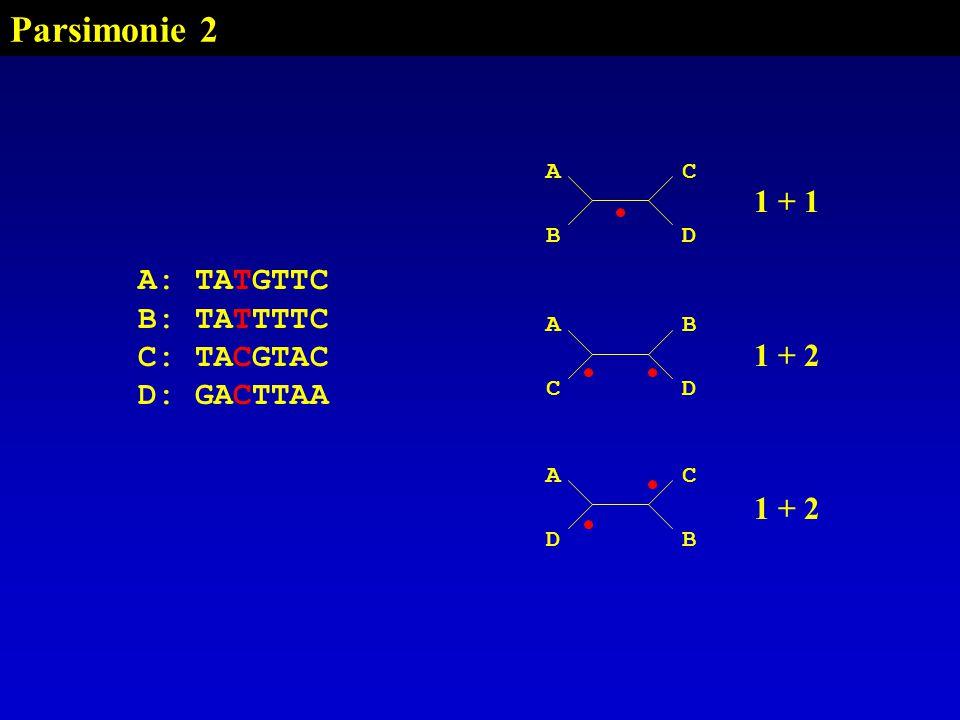 Parsimonie 2 1 + 1 1 + 2 A: TATGTTC B: TATTTTC C: TACGTAC D: GACTTAA A