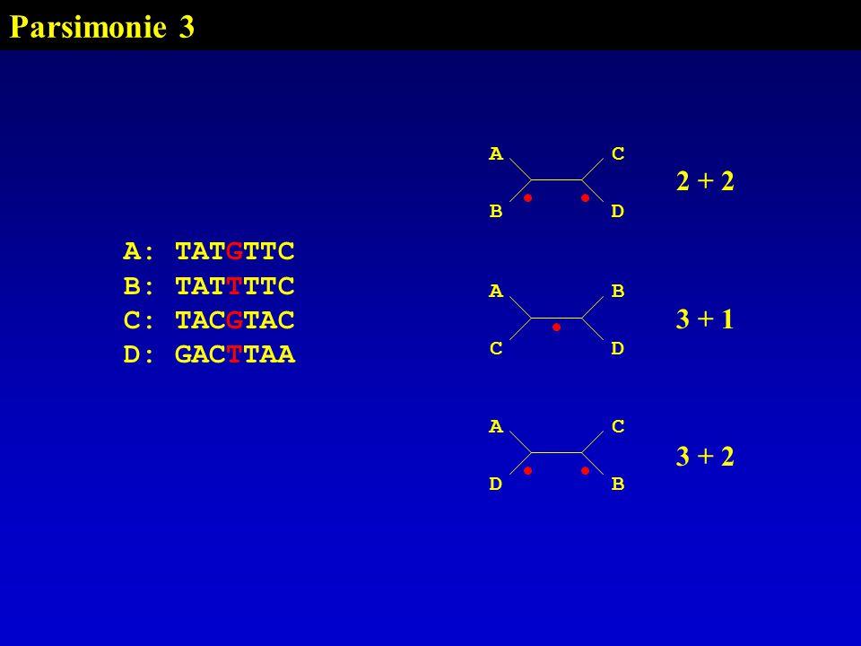 Parsimonie 3 2 + 2 3 + 1 A: TATGTTC B: TATTTTC C: TACGTAC D: GACTTAA