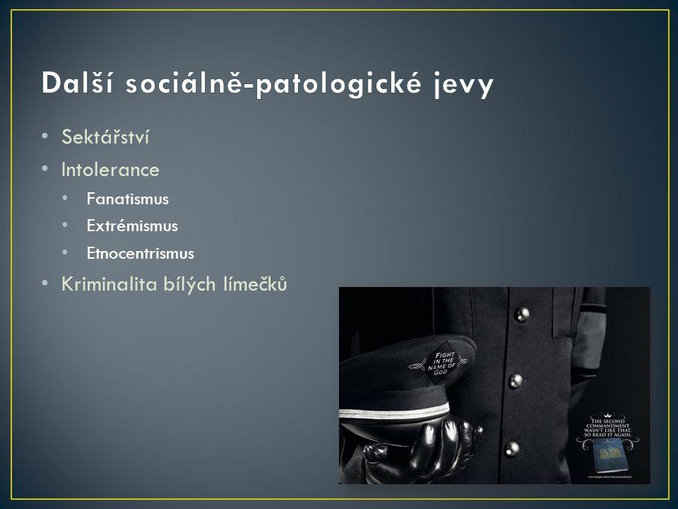 Další sociálně-patologické jevy