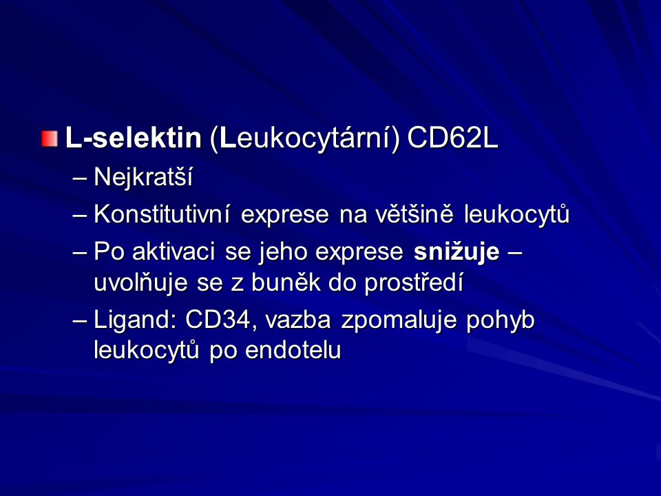 L-selektin (Leukocytární) CD62L