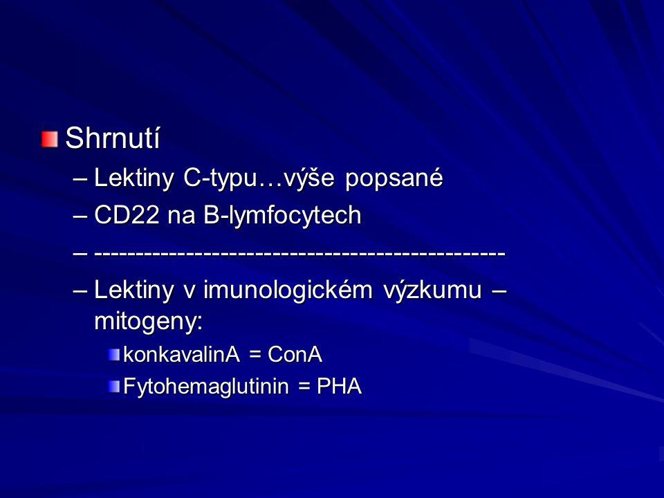 Shrnutí Lektiny C-typu…výše popsané CD22 na B-lymfocytech