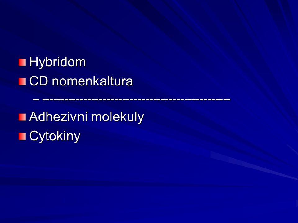 Hybridom CD nomenkaltura Adhezivní molekuly Cytokiny