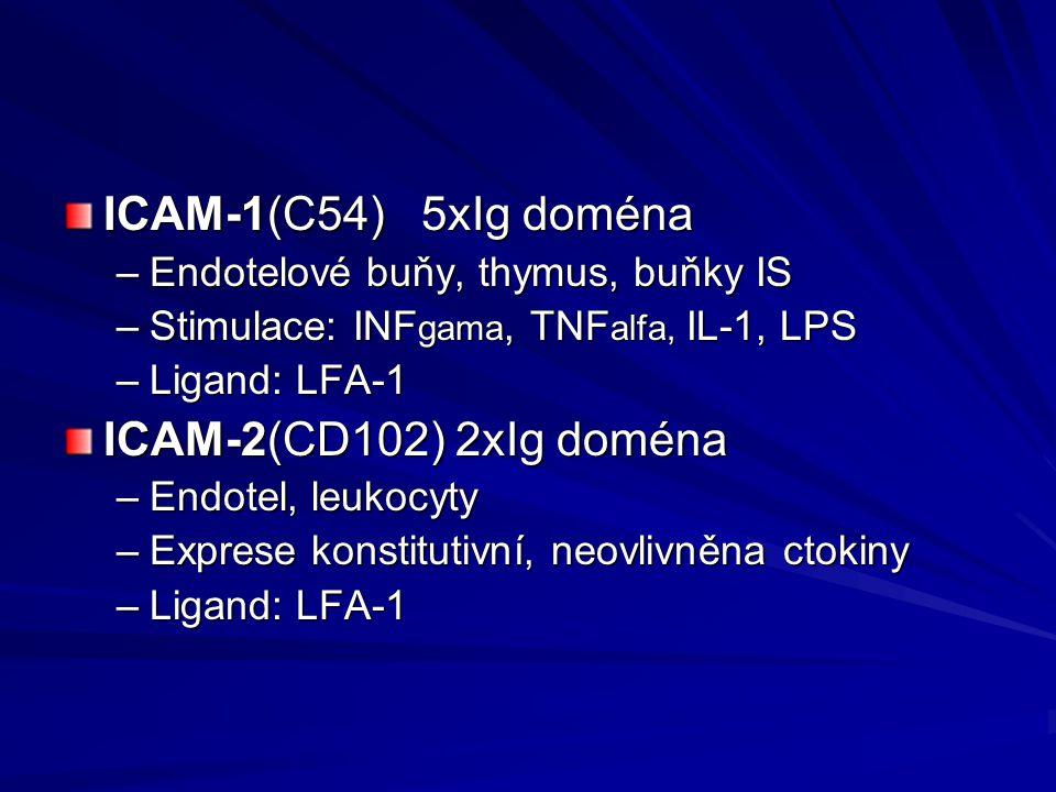 ICAM-1(C54) 5xIg doména ICAM-2(CD102) 2xIg doména