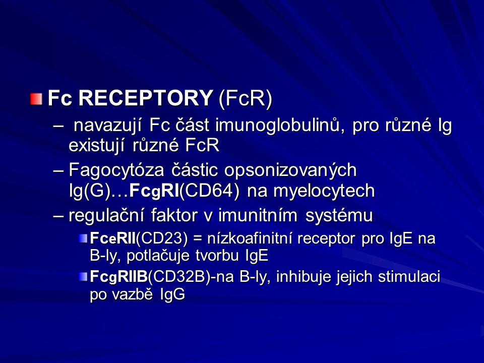 Fc RECEPTORY (FcR) navazují Fc část imunoglobulinů, pro různé Ig existují různé FcR.