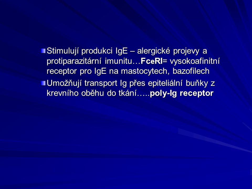 Stimulují produkci IgE – alergické projevy a protiparazitární imunitu…FceRI= vysokoafinitní receptor pro IgE na mastocytech, bazofilech