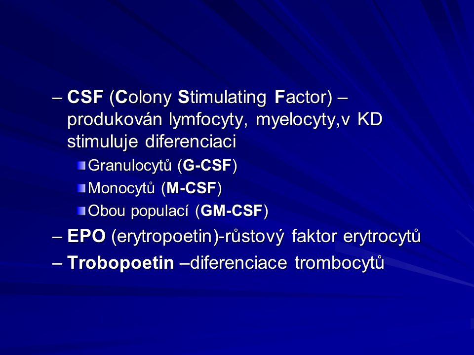 EPO (erytropoetin)-růstový faktor erytrocytů