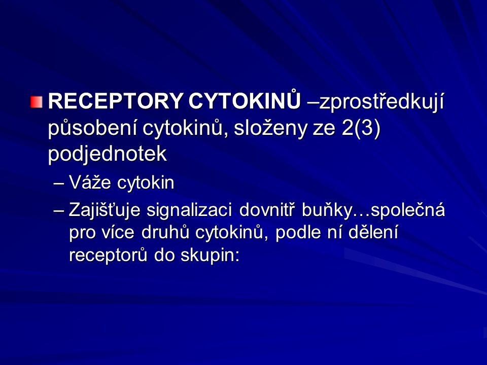 RECEPTORY CYTOKINŮ –zprostředkují působení cytokinů, složeny ze 2(3) podjednotek