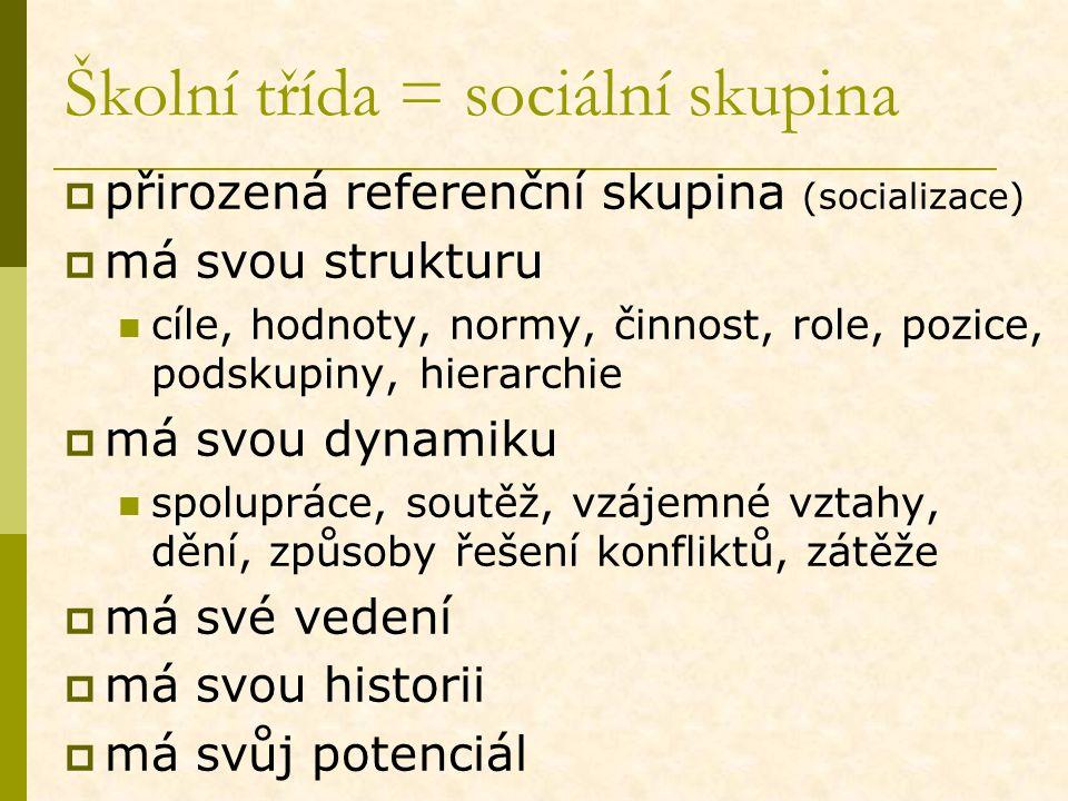 Školní třída = sociální skupina