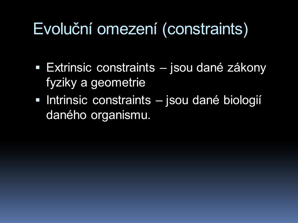 Evoluční omezení (constraints)