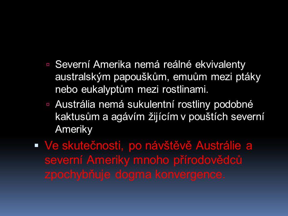 Severní Amerika nemá reálné ekvivalenty australským papouškům, emuům mezi ptáky nebo eukalyptům mezi rostlinami.