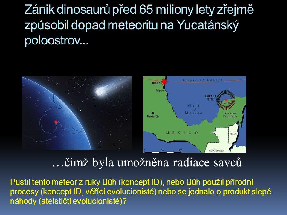 …čímž byla umožněna radiace savců