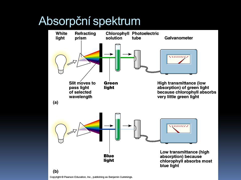 Absorpční spektrum