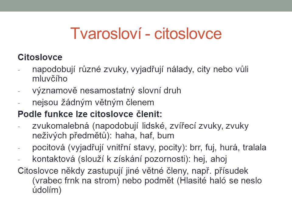 Tvarosloví - citoslovce