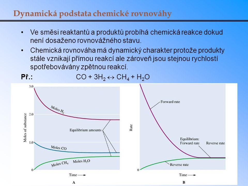 Dynamická podstata chemické rovnováhy