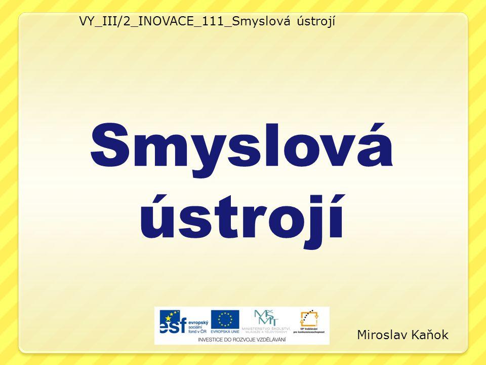 VY_III/2_INOVACE_111_Smyslová ústrojí
