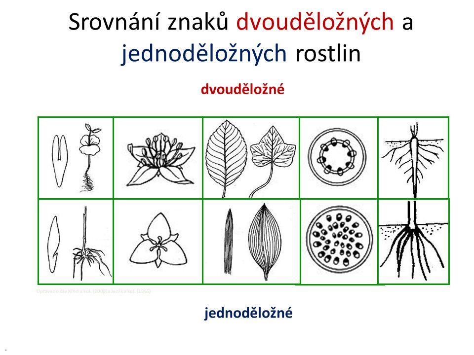 Srovnání znaků dvouděložných a jednoděložných rostlin