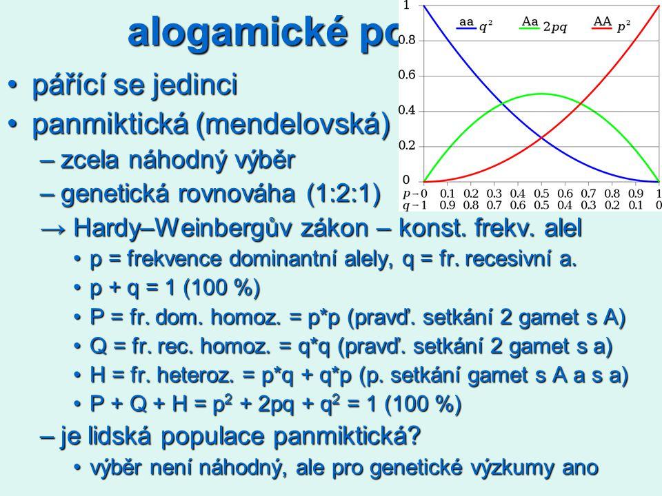 alogamické populace pářící se jedinci panmiktická (mendelovská)