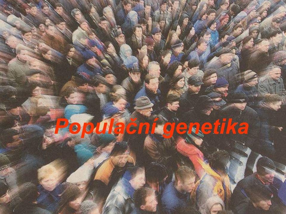 Populační genetika