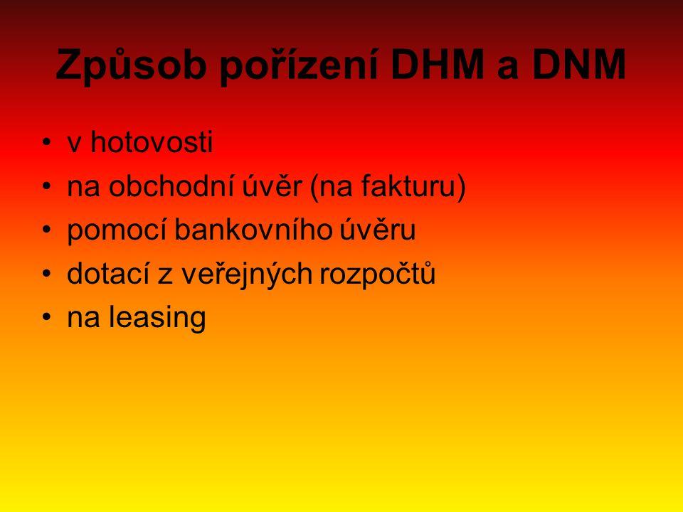 Způsob pořízení DHM a DNM