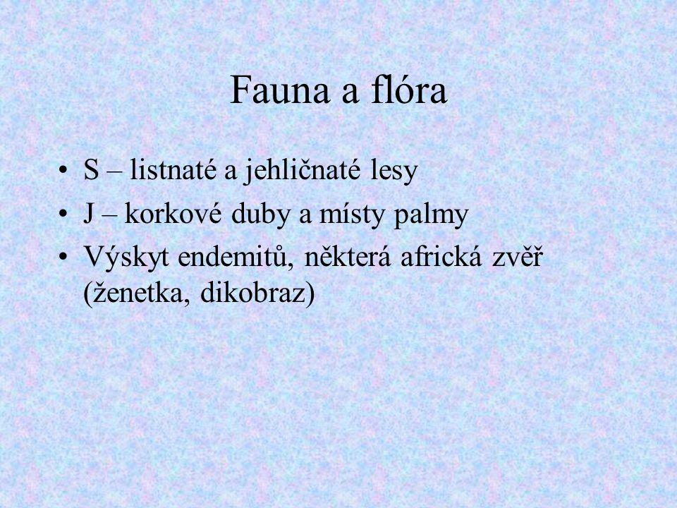 Fauna a flóra S – listnaté a jehličnaté lesy