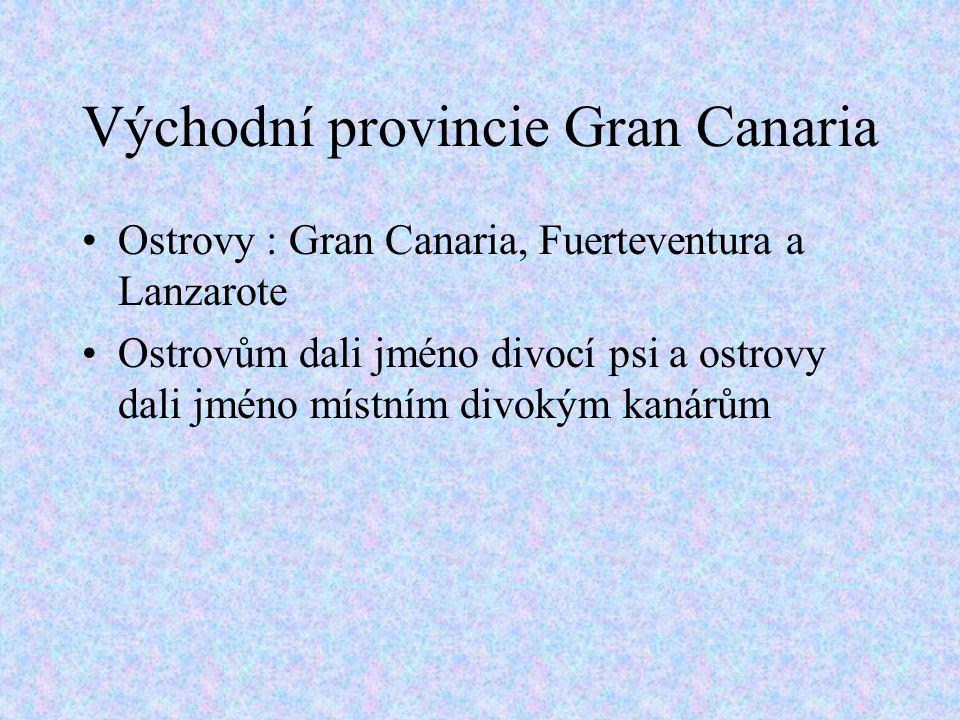 Východní provincie Gran Canaria