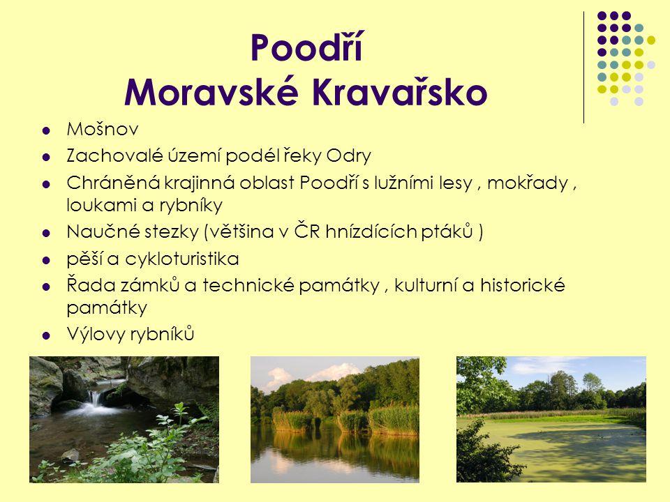 Poodří Moravské Kravařsko