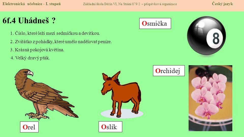 6f.4 Uhádneš Osmička Orchidej Orel Oslík