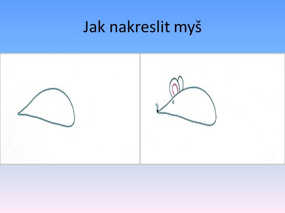 Jak nakreslit myš