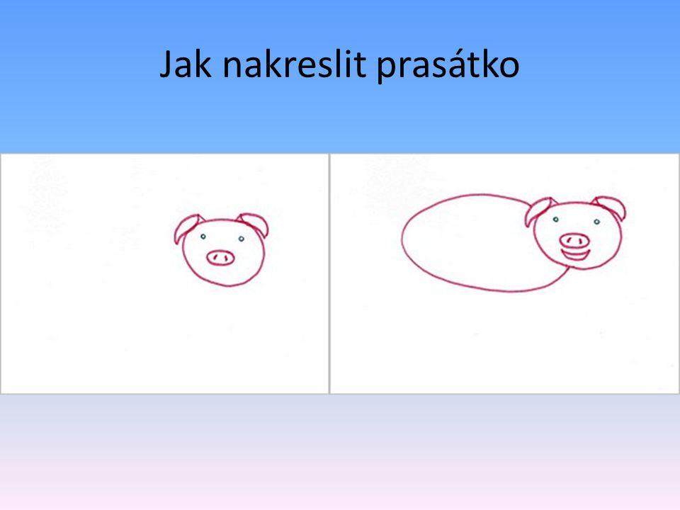 Jak nakreslit prasátko