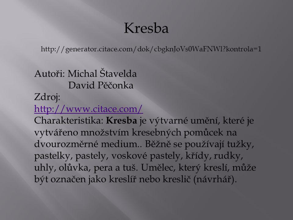 Autoři: Michal Štavelda David Pěčonka Zdroj: http://www.citace.com/