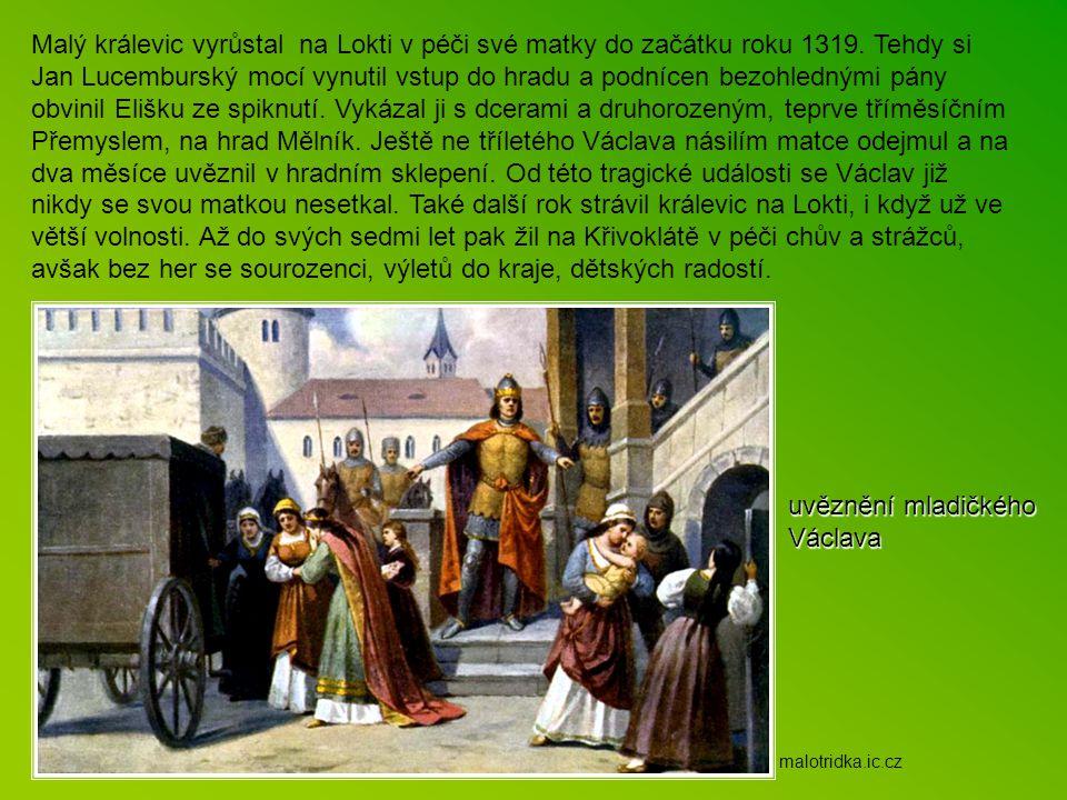 Malý králevic vyrůstal na Lokti v péči své matky do začátku roku 1319