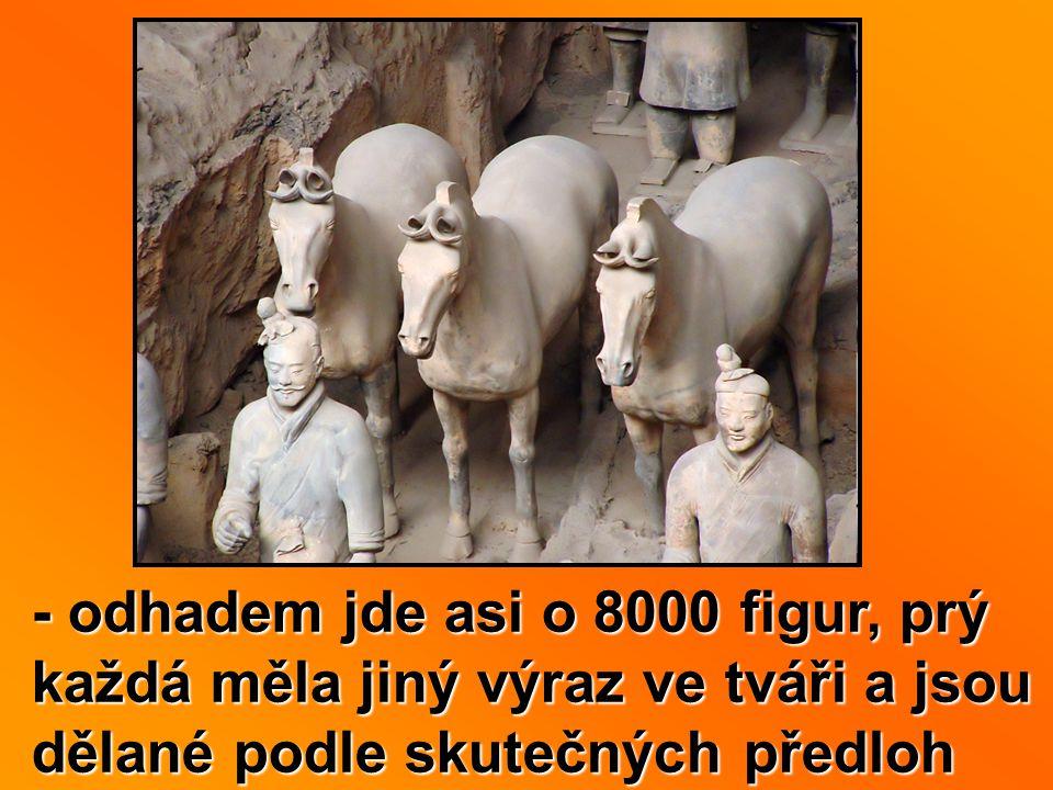 - odhadem jde asi o 8000 figur, prý každá měla jiný výraz ve tváři a jsou dělané podle skutečných předloh