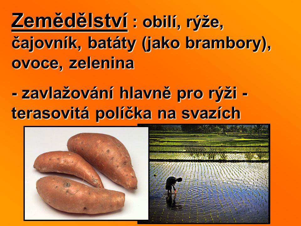 Zemědělství : obilí, rýže, čajovník, batáty (jako brambory), ovoce, zelenina