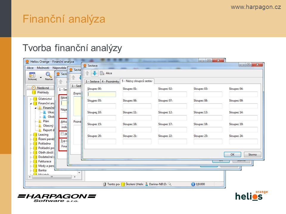 Finanční analýza Tvorba finanční analýzy