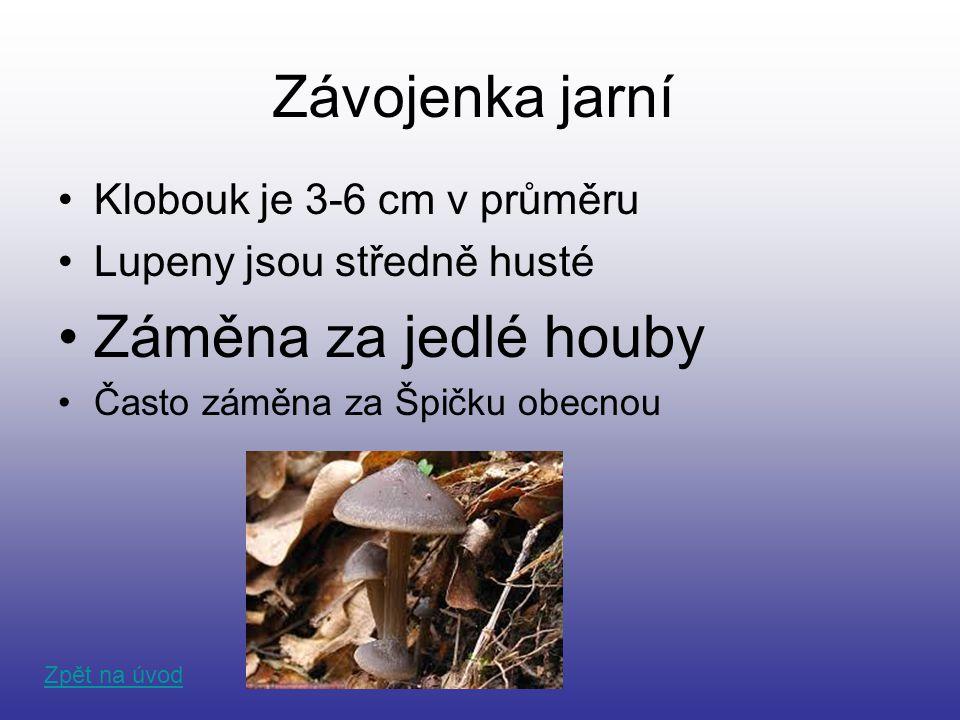 Závojenka jarní Záměna za jedlé houby Klobouk je 3-6 cm v průměru
