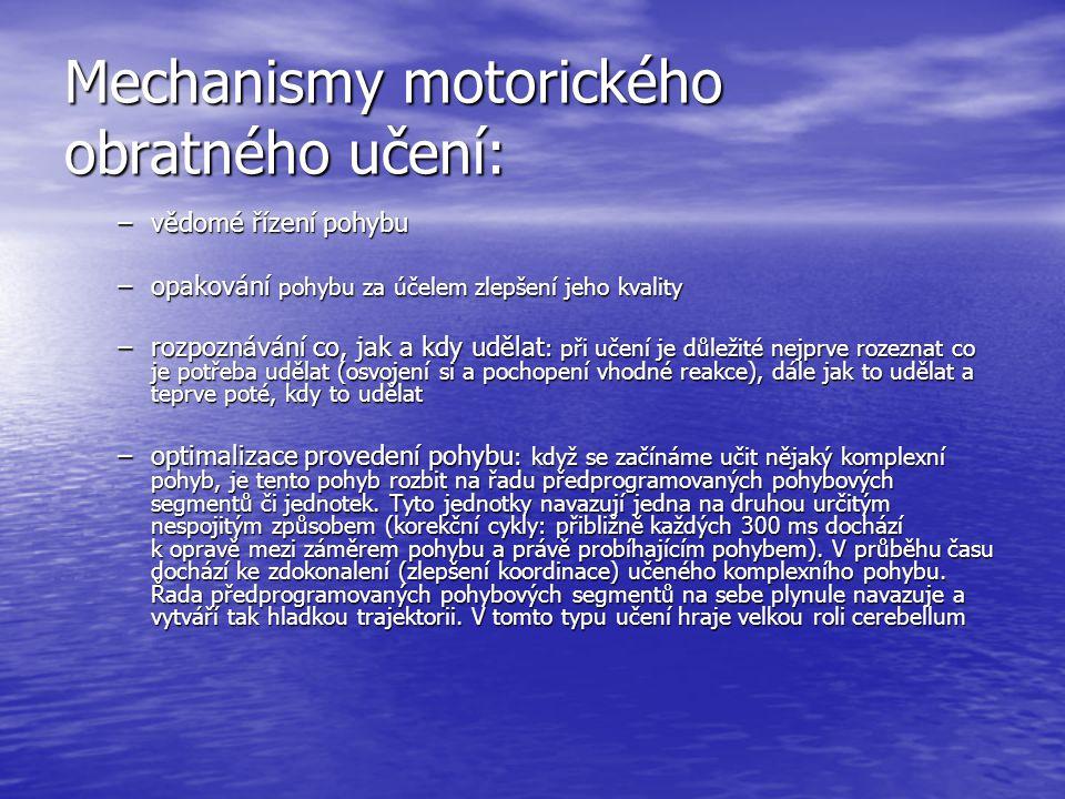 Mechanismy motorického obratného učení: