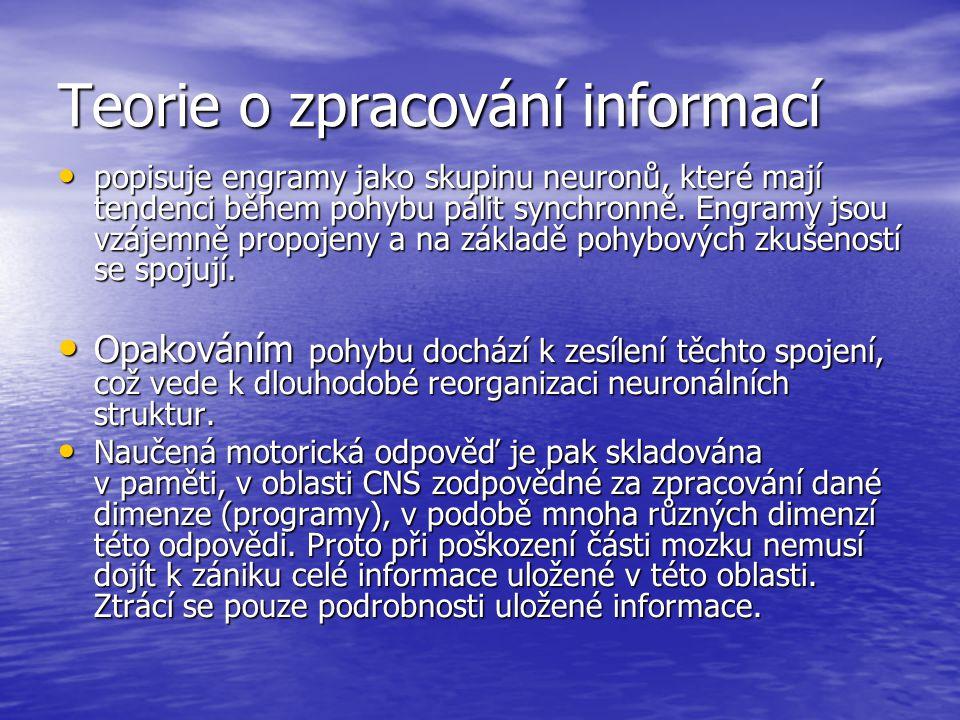 Teorie o zpracování informací