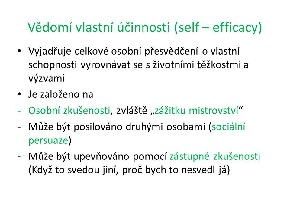 Vědomí vlastní účinnosti (self – efficacy)