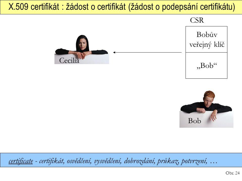 X.509 certifikát : žádost o certifikát (žádost o podepsání certifikátu)