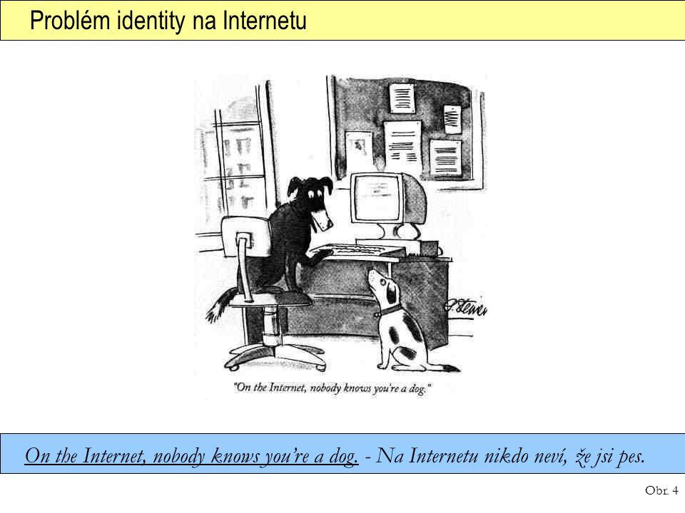 Problém identity na Internetu