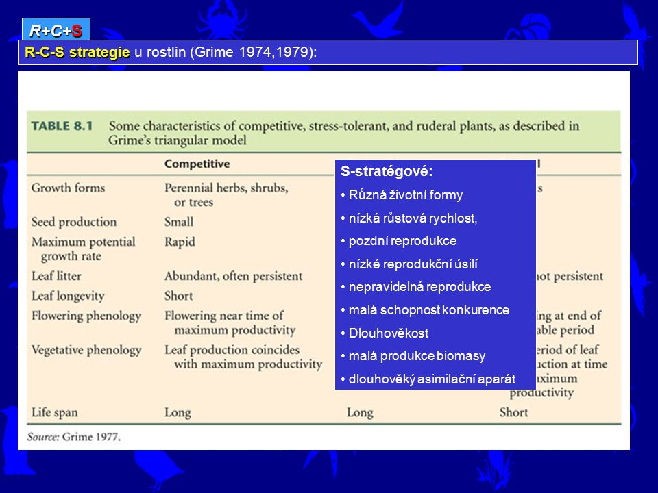 R+C+S R-C-S strategie u rostlin (Grime 1974,1979): S-stratégové: