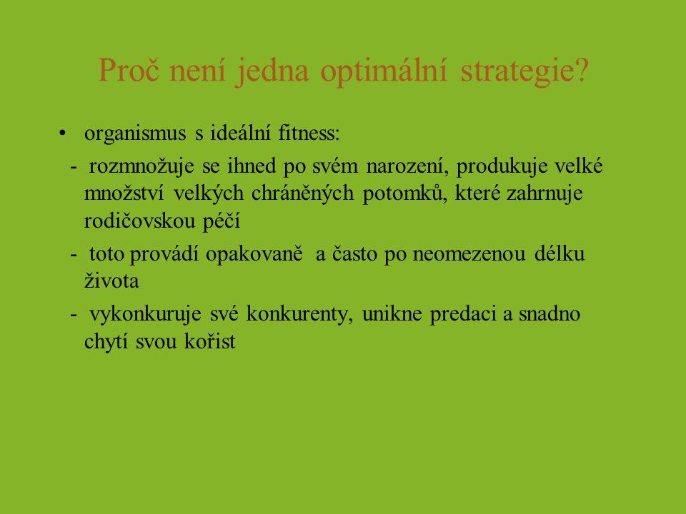 Proč není jedna optimální strategie
