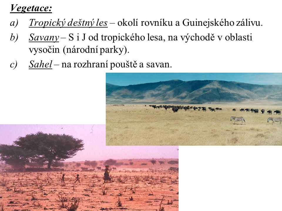 Vegetace: Tropický deštný les – okolí rovníku a Guinejského zálivu. Savany – S i J od tropického lesa, na východě v oblasti vysočin (národní parky).