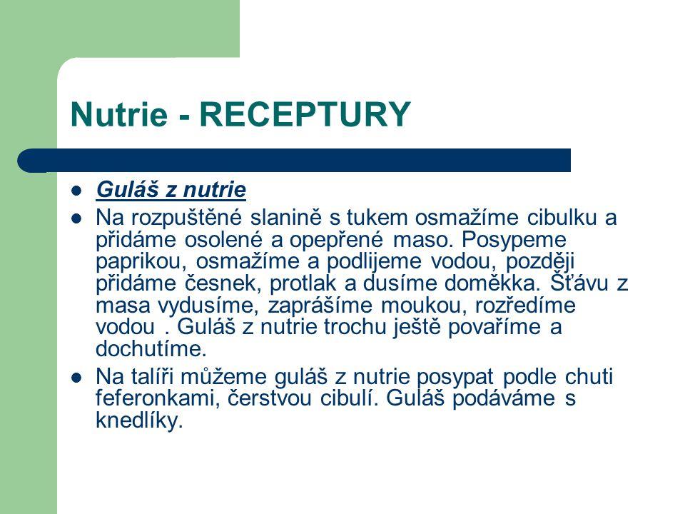 Nutrie - RECEPTURY Guláš z nutrie